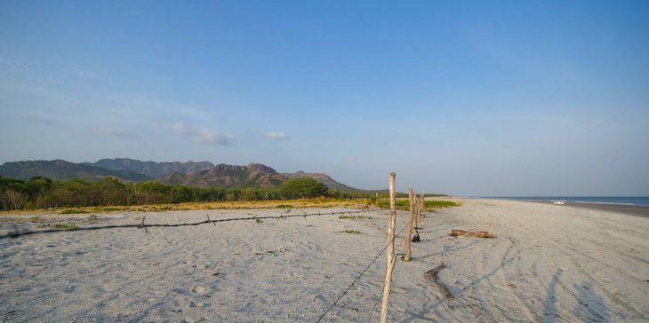 landscape litter playa gorgona malibu panama
